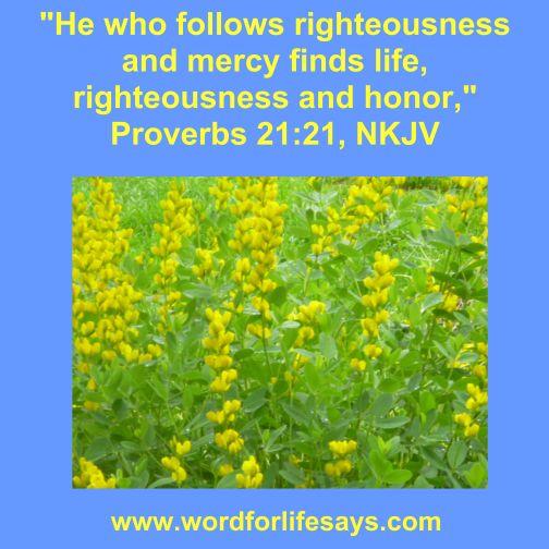 proverbs 21 21-001