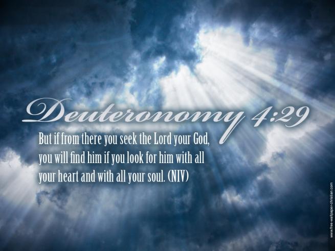 Deuteronomy-4-29