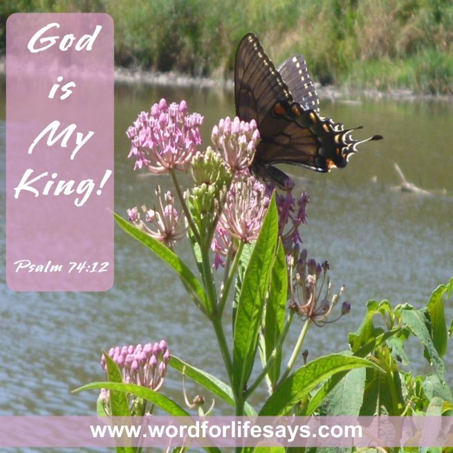God is King-001
