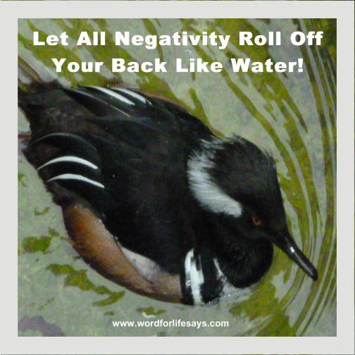 negativity-001