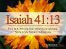 isaiah-4113_4743_1024x768