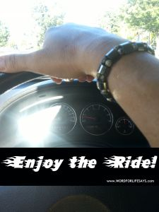 enjoy the ride-001