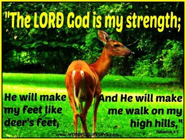 Habakkuk 3 9