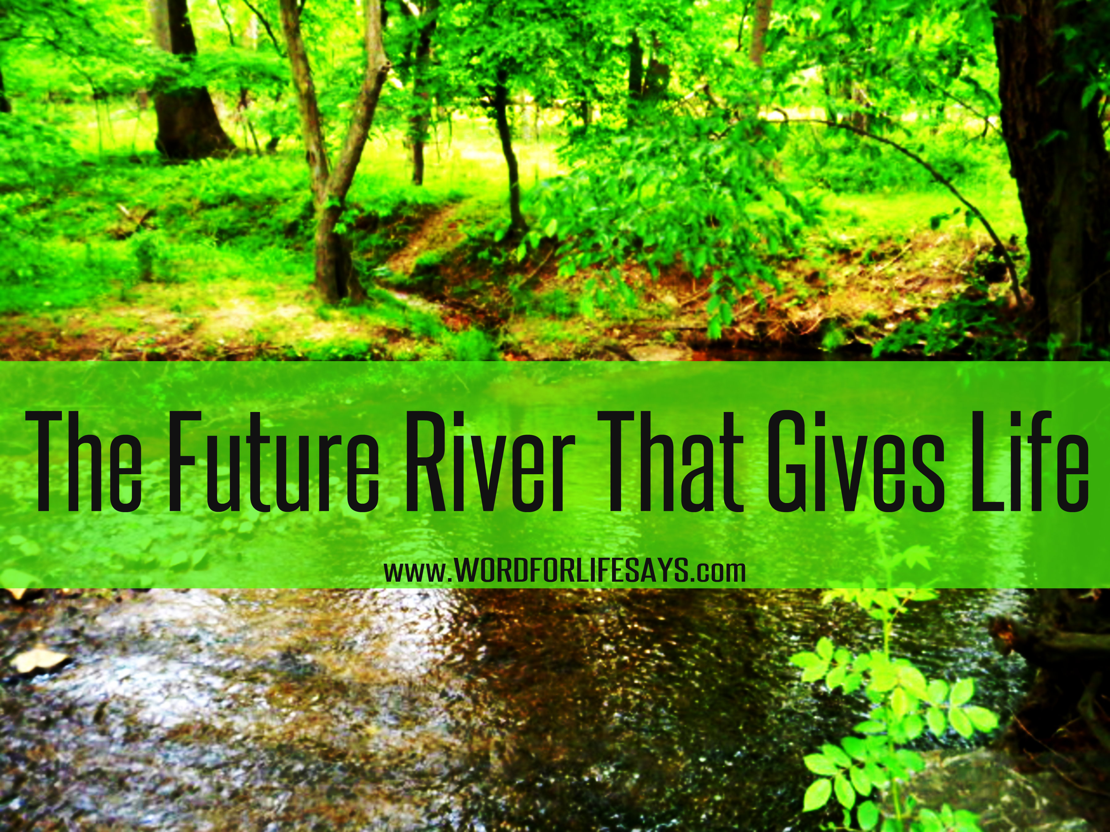 The Future River That Gives Life Sunday School Lesson