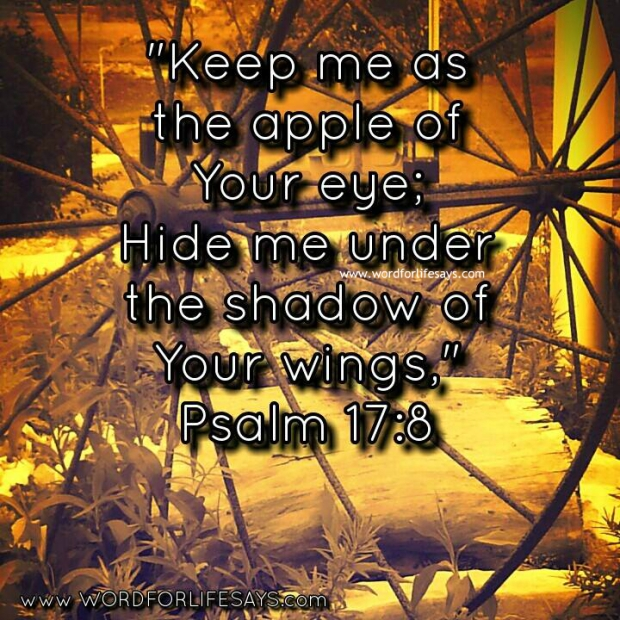 keep me as the apple of Your eye