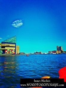 A view while out on one of the paddle boats in the harbor with my honey and baby girl. In the background you see the Aquarium and the Domino Sugar plant.