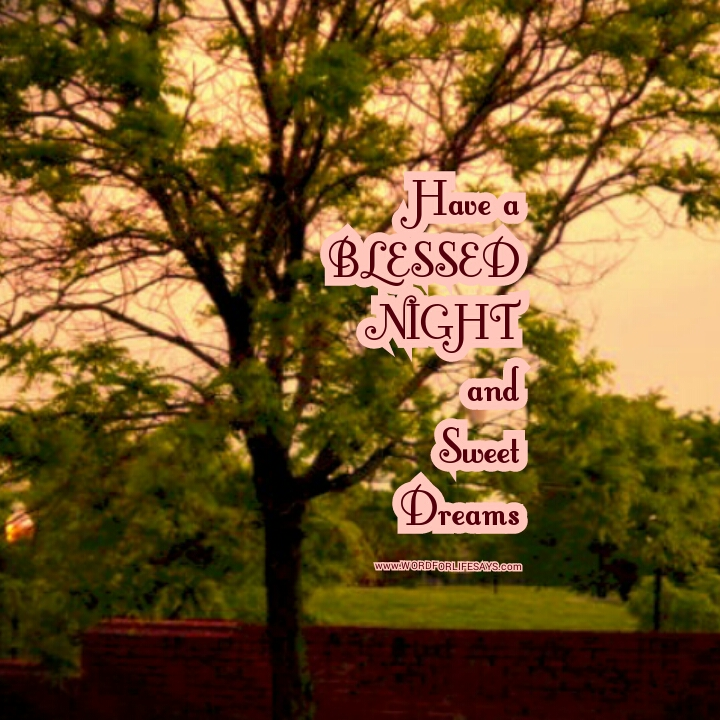 Blessed Night Quotes Word For Life Says