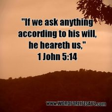 ask anything according to his will