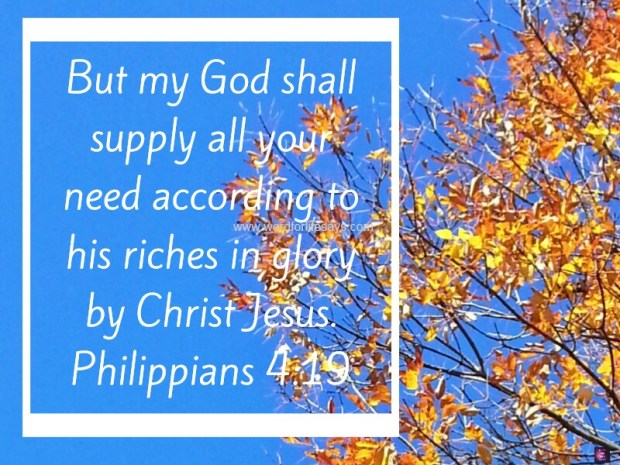 phil 4 19 God shall supply all need autumn background