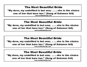 The Most Beautiful Bride Verse Cut Outs-001