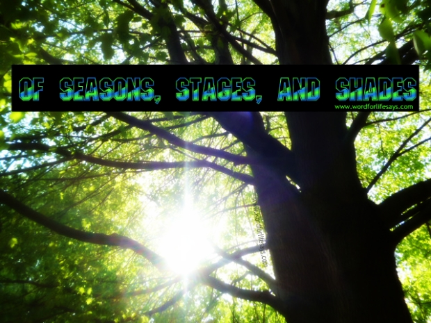 of seasons stages and shades