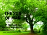 the Son of man came to seek and to save