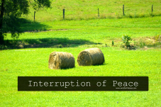 interruption of peace
