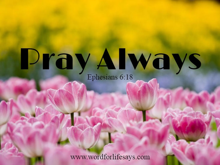 """Pray Always!""  Ephesians 6:18   www.wordforlifesays.com"