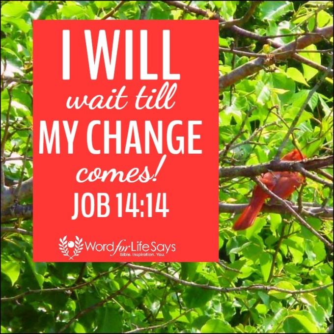 Image result for I WILL WAIT TILL MY CHANGE COMES