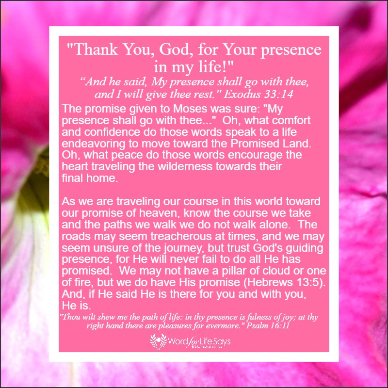 thank You God for Your presence in my life - my pic (3)