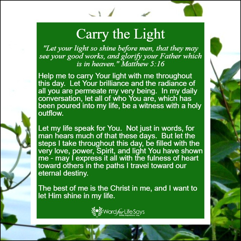 carry the light - my pic